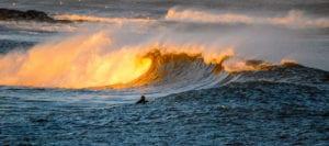 wax buddy rye beach winter surf