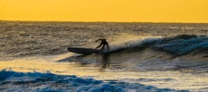 wax buddy sunset surf