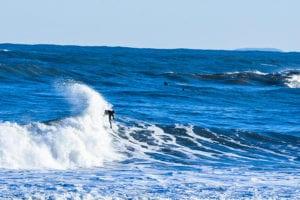 waxbuddy storm swell
